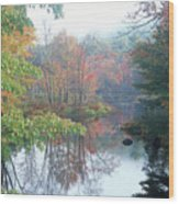 Tully River Autumn Wood Print