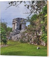 Tulum Watchtower Wood Print