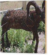 Tumble Weed Sheep Reno Nevada Wood Print