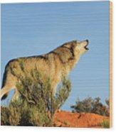 Tundra Wolf Wood Print