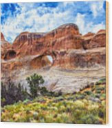 Tunnel Arch Trail View Wood Print