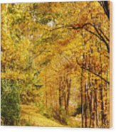 Tunnel Of Gold Wood Print