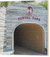 Tunnel Park, Holland Mi Wood Print