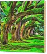 Tunnel Tree Wood Print