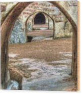 Tunnel Vision Wood Print by Michael Garyet