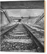 Tunnels And Tracks Wood Print