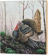 In Strut - Turkey Wood Print