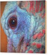 Turkey Head Shot Wood Print