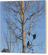 Turkey Vulture Tree Wood Print