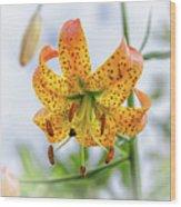 Turk's Cap Lily Wood Print