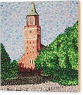 Turku Cathedral  Wood Print