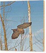 Turning Left In-flight Wood Print