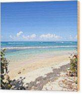 Turquoise Beach Hideaway In Vieques Wood Print
