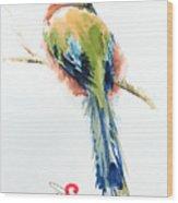 Turquoise-browed Motmot  Bird Wood Print