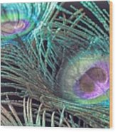 Turquoise Feather Wood Print