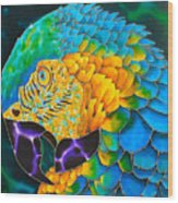 Turquoise Gold Macaw  Wood Print by Daniel Jean-Baptiste