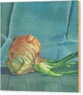 Turquoise Onion Wood Print