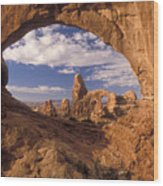 Turret Arch And North Window Wood Print
