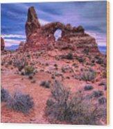 Turret Arch Wood Print