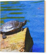 Turtle Basking In The Sun Wood Print by Wingsdomain Art and Photography