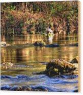 Turtle Creek Wood Print