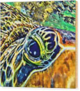 Turtle Eye Wood Print