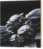 Turtle Family Wood Print