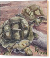 Turtle Friends Wood Print