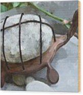 Turtle Full Of Rocks Wood Print