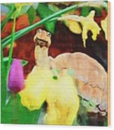 Turtle In The Tulips Wood Print