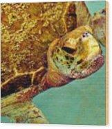 Turtle Life Wood Print