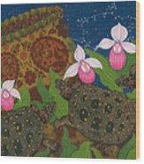 Turtle - Mihkinahk Wood Print