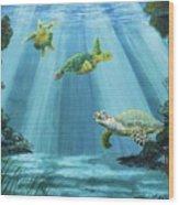 Turtle Reef Wood Print