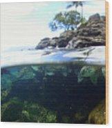 Turtle Tide Wood Print