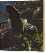 Turtle Wave Wood Print