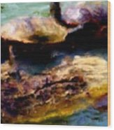 Turtles On A Log Wood Print