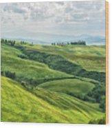 Tusacny Hills I Wood Print