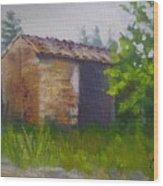 Tuscan Abandoned Farm Shed Wood Print