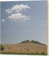 Tuscan Field And Cloud 4699 Wood Print