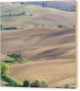 Tuscan Landscape With Plowed Fields Wood Print