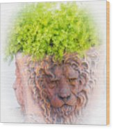 Tuscan Lion Wood Print