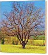 Tuscan Splendor Wood Print