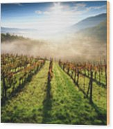 Tuscan Sunrise Wood Print