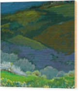 Tuscan Vista Wood Print