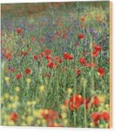 Tuscan Wildflowers Wood Print