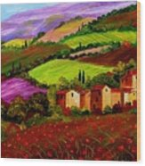 Tuscany Landscape Wood Print