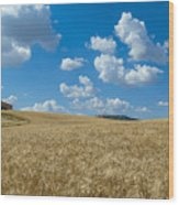 Tuscany Landscape With The Town Of Pienza, Val D'orcia, Italy Wood Print