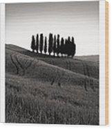 Tuscany Triptych Wood Print
