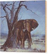Tusker Wood Print