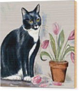 Tuxedo Cat Sitting By The Pink Tulips  Wood Print